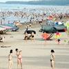 Haiphong Do-Son-beach