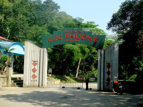vuon-quoc-gia-cuc-phuong_4