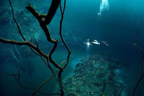 1383797913-underwater-river-cenote-angelita-mexico-8-1
