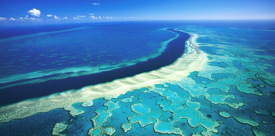 ran-san-ho-great-barrier-reef-du-lich-uc-mixtourist